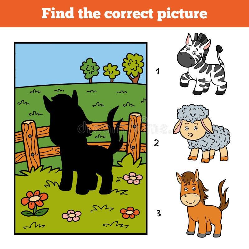 Найдите правильное изображение Маленькие лошадь и предпосылка бесплатная иллюстрация