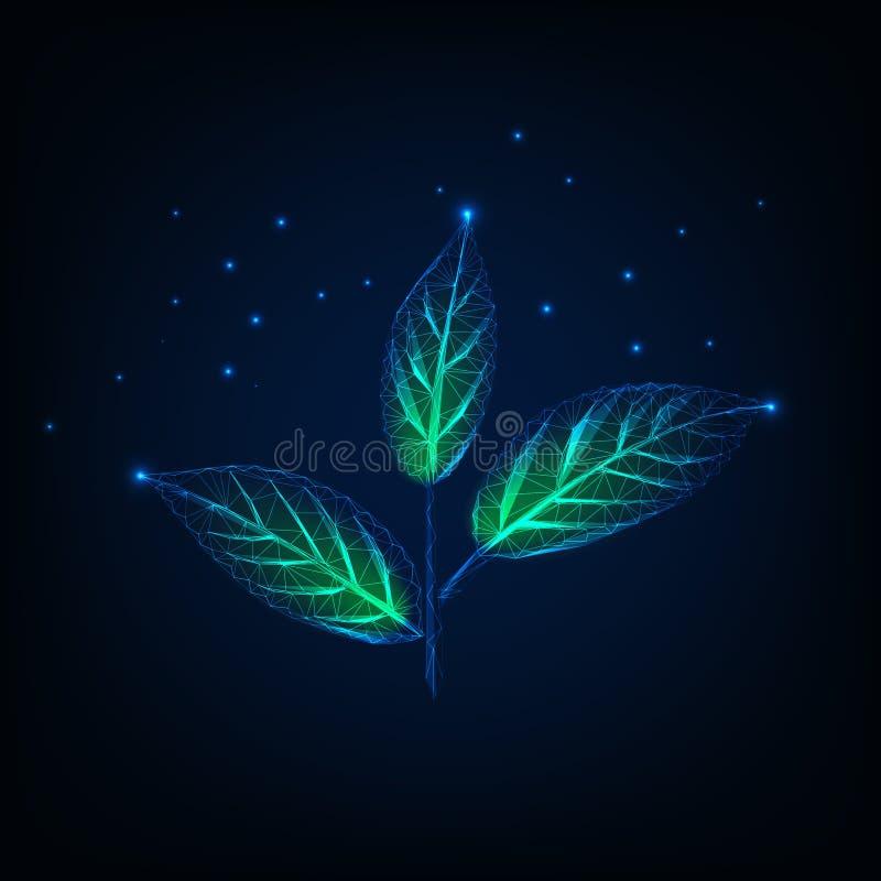 Накаляя завод при листья стержня и зеленого цвета сделанные линий, точек, треугольников, низких полигональных форм Экологичность, иллюстрация вектора
