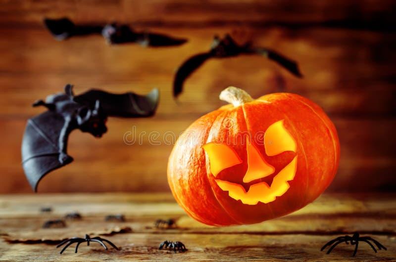 Накаляя тыква летая с летучими мышами на темной деревянной предпосылке hallow стоковое фото rf