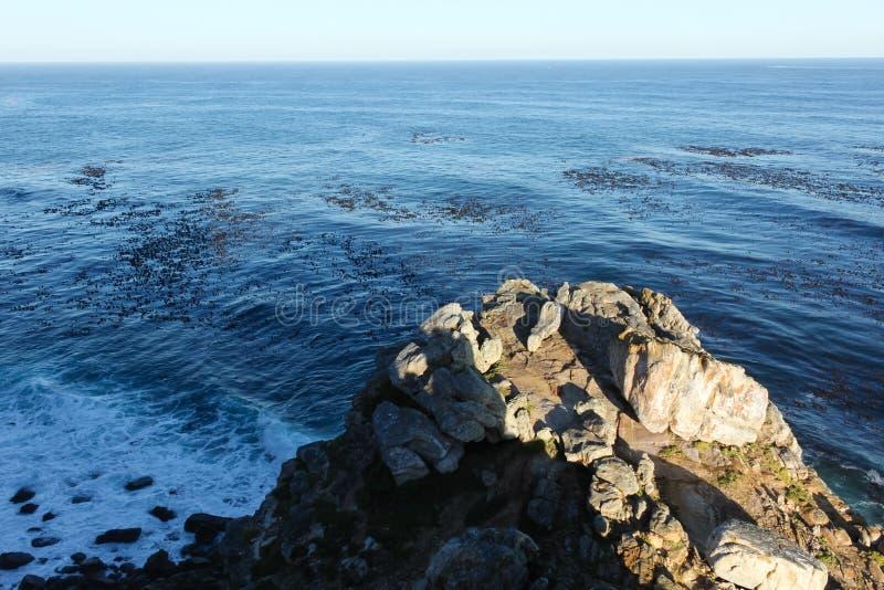 Накидка хорошей надежды, Южная Африка стоковое изображение