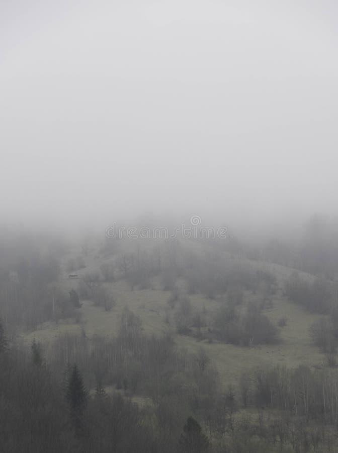 Наклон в густой туман стоковое изображение