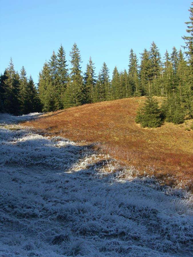 Наклон горы стоковое изображение
