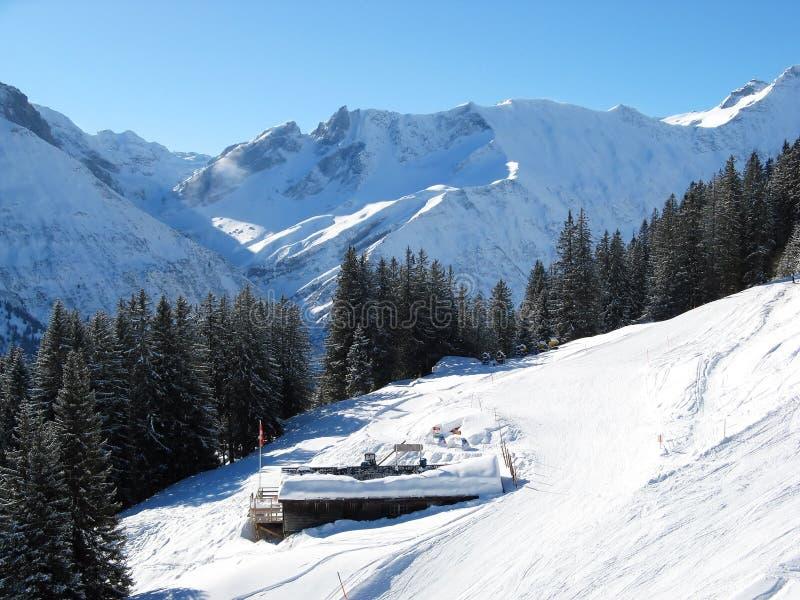 наклон катания на лыжах стоковая фотография