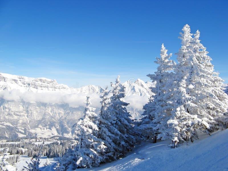 наклон катания на лыжах стоковые фотографии rf