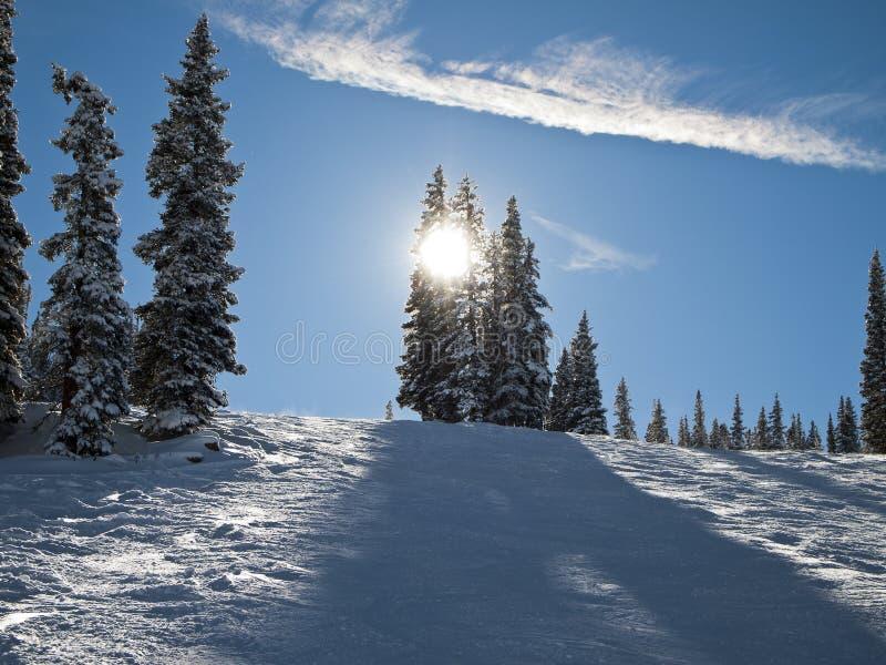Наклон лыжи Колорадо стоковое фото rf