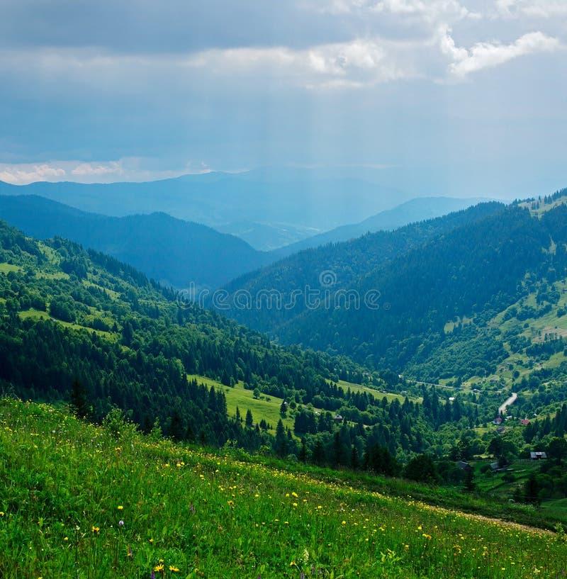 Наклоны горы покрыты с лесом стоковая фотография