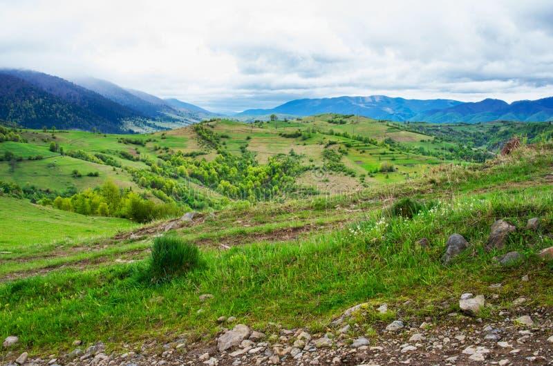 Наклоны горы с зеленым лугом стоковое изображение rf