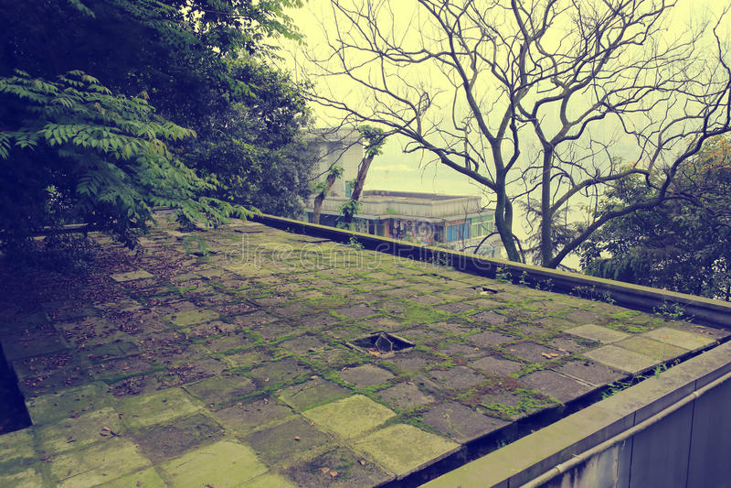 Наклон плоской крыши стоковое фото rf