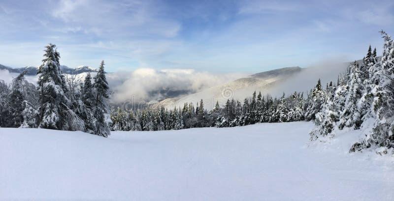 Наклон Snowy стоковое фото