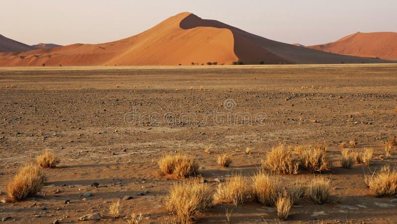 Намибия, пустыня Namib, стоковая фотография