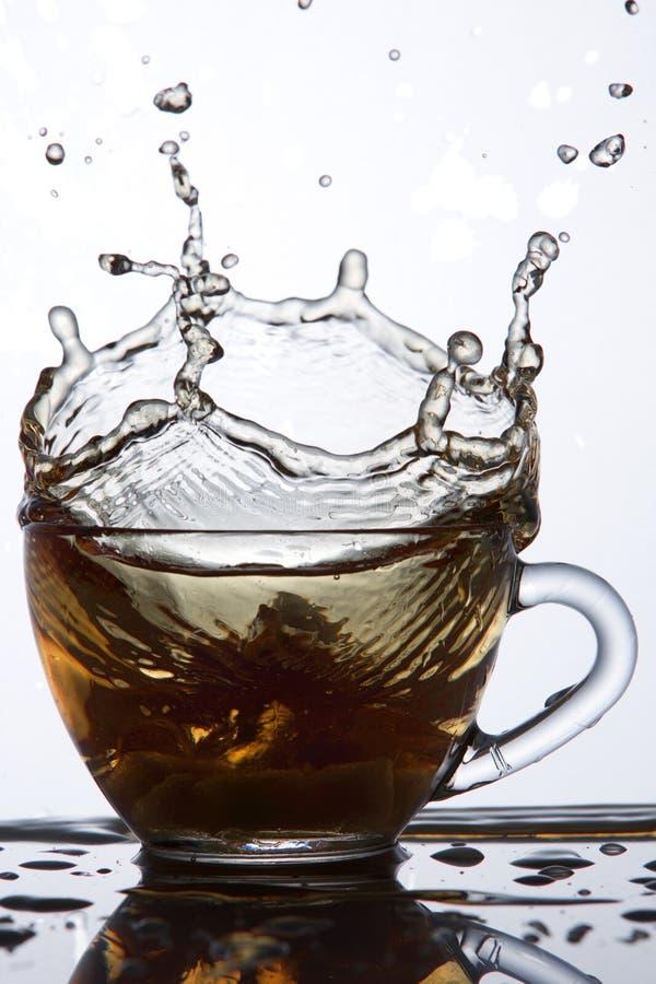 Намочите выплеск в стеклянной чашке на белой предпосылке, конце-вверх, макросе, селективном фокусе, вертикальном стоковая фотография