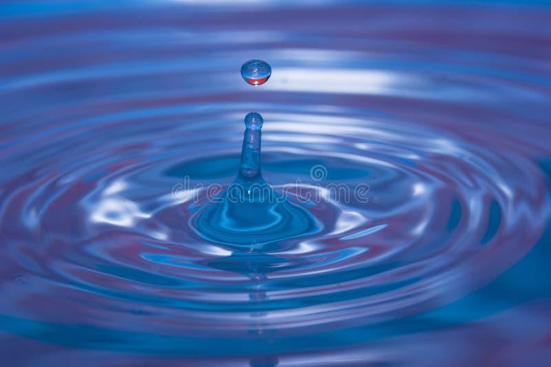 Намочите падение понижаясь в воду стоковые фотографии rf