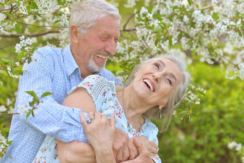Напольный портрет счастливых старших пар стоковая фотография rf