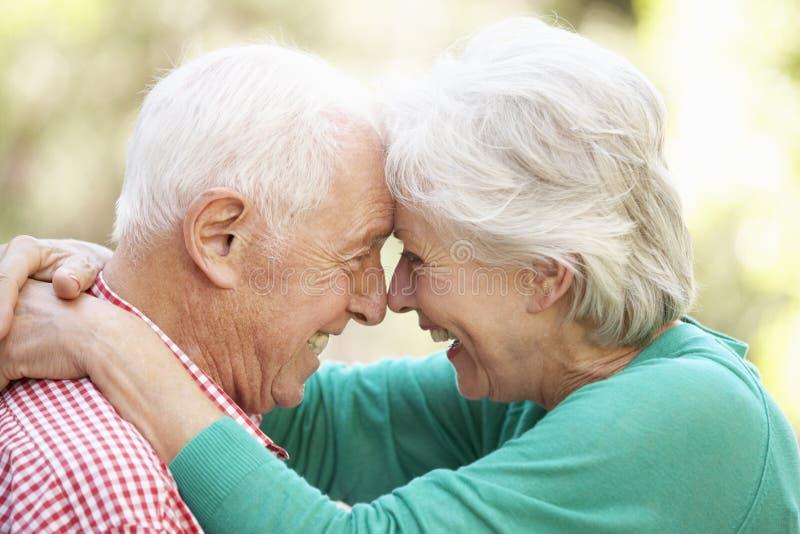 Напольный портрет счастливых старших пар стоковое изображение