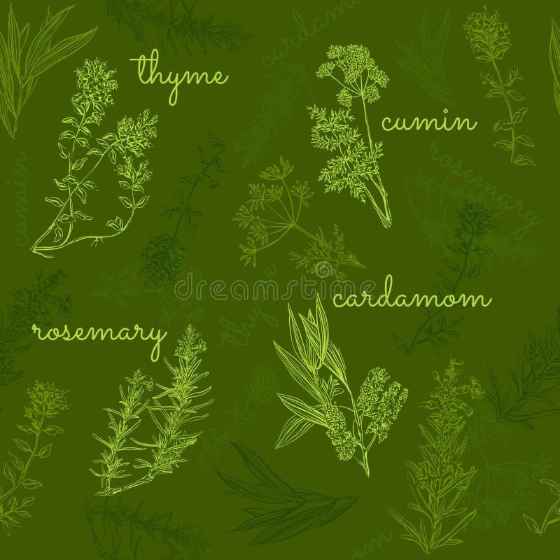 Нарисованная вручную картина собрания трав и специй безшовная иллюстрация вектора