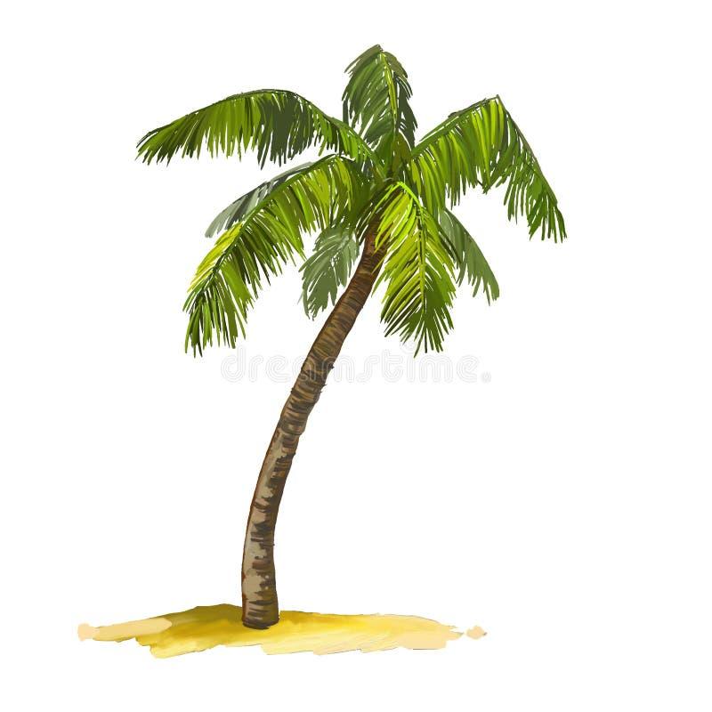 Нарисованная рука иллюстрации вектора пальмы покрашенной иллюстрация вектора