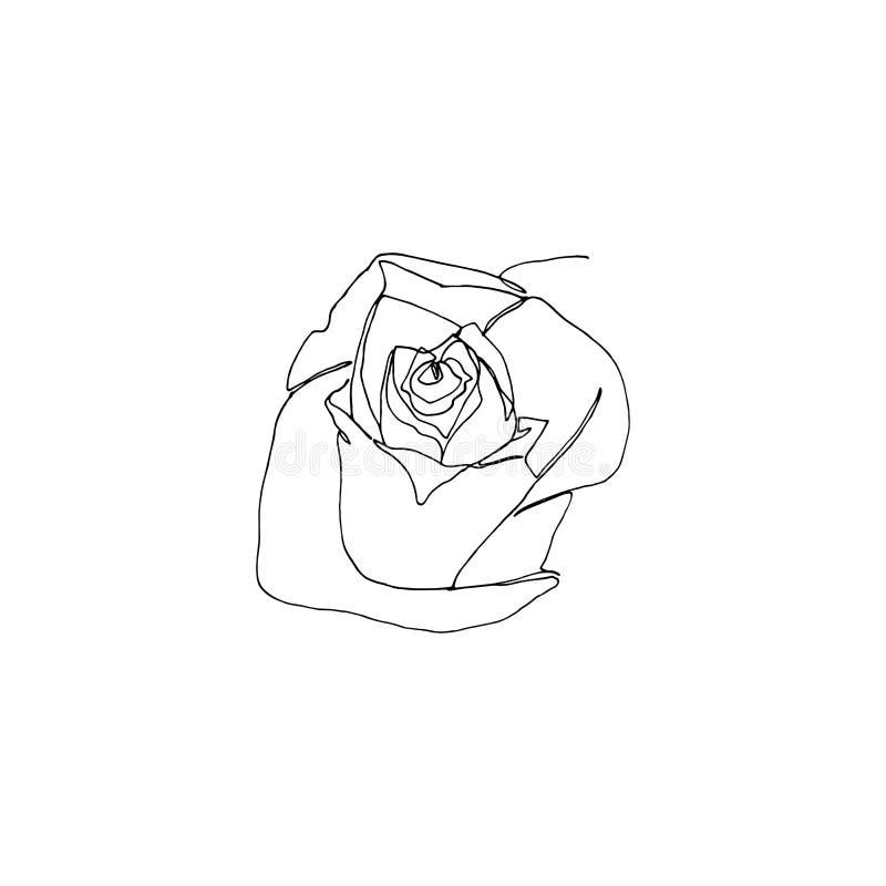 Нарисованная рука подняла цветок, одна одиночная непрерывная линия чертеж иллюстрация вектора
