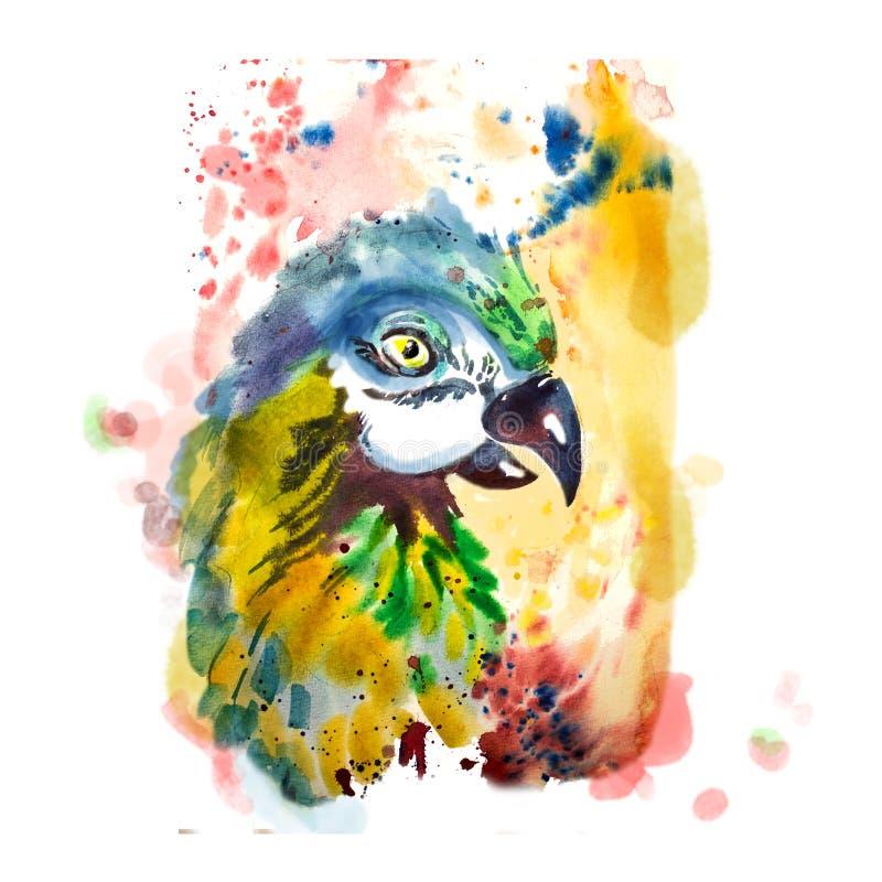 Нарисованная рукой голова попугая иллюстрация штока