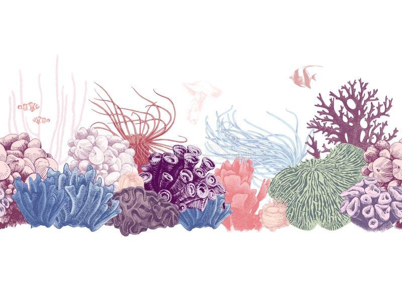 Нарисованная рукой красочная граница кораллового рифа иллюстрация вектора