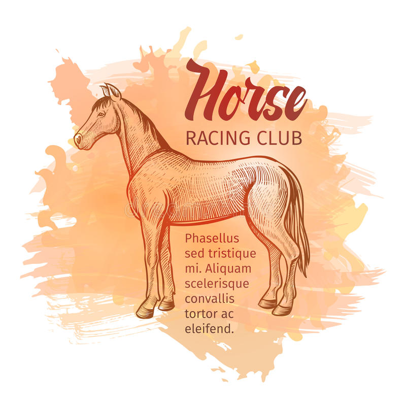Нарисованная рукой лошадь эскиза Предпосылка клуба лошадиных скачек также вектор иллюстрации притяжки corel бесплатная иллюстрация