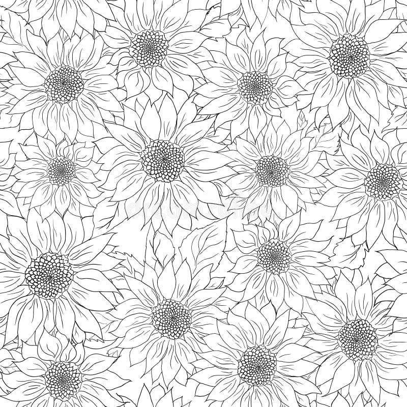 Нарисованная рукой предпосылка солнцецветов картины Белизна цветка черная Упаковывая продукты иллюстрация штока
