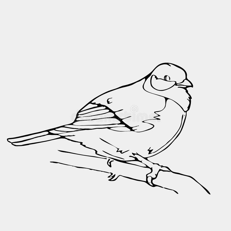 Нарисованные вручную графики карандаша, малая птица Гравировка, стиль восковки бесплатная иллюстрация