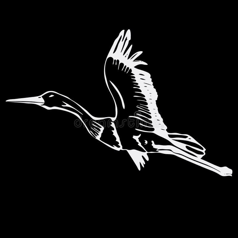 Нарисованные вручную графики карандаша, аист, лебедь Гравировка, styl восковки иллюстрация вектора