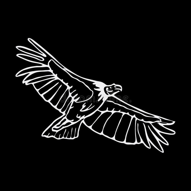 Нарисованные вручную графики карандаша, хищник, орел, скопа, сокол, хоук бесплатная иллюстрация
