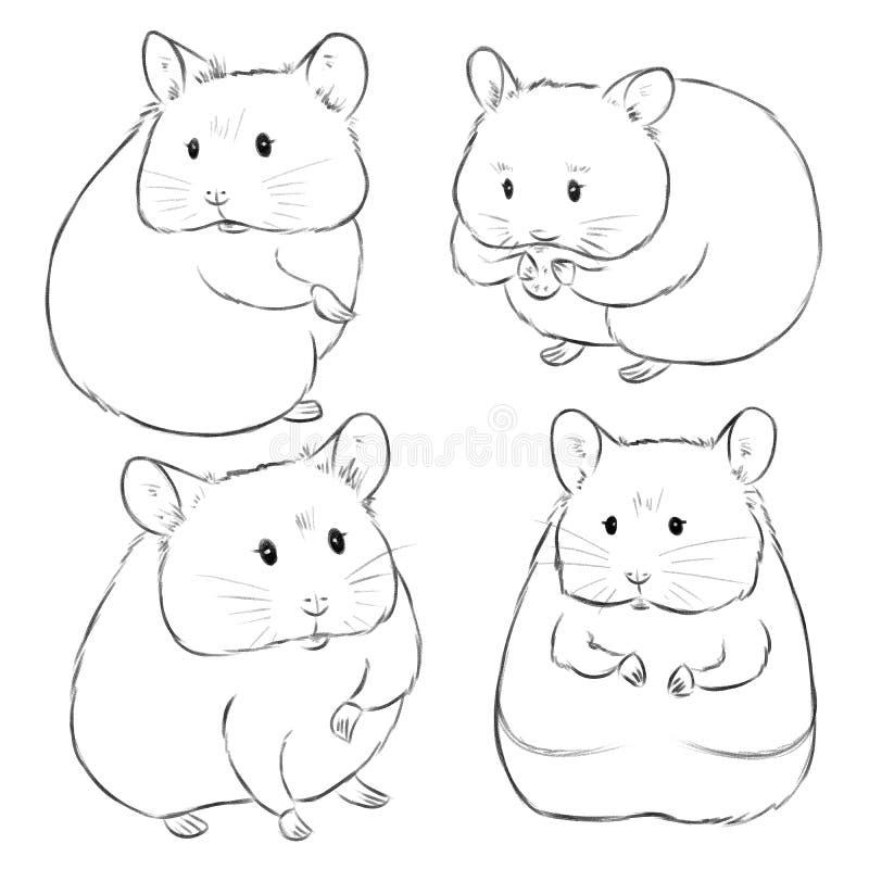 Нарисованные вручную эскизы милых хомяков мультфильма на белой предпосылке Иллюстрация маленьких животных нарисованных как эскизы иллюстрация вектора