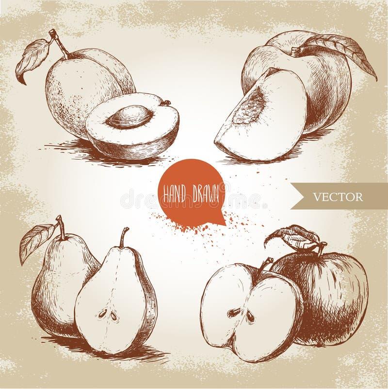 Нарисованные рукой установленные плодоовощи стиля эскиза Абрикосы, персики, половинные груши, яблоки Иллюстрация вектора еды Eco иллюстрация штока