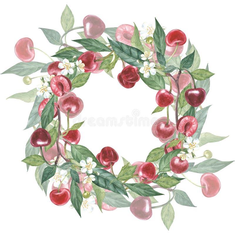 Нарисованный вручную венок акварели цветков иллюстрации вишни и листьев Иллюстрация акварели ботаническая изолированная дальше иллюстрация вектора
