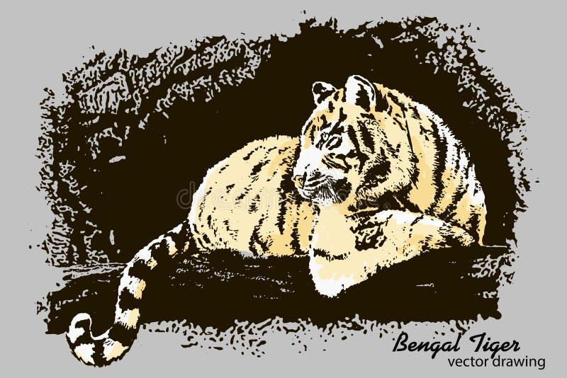 Нарисованный вручную чертеж вектора тигра Бенгалии иллюстрация вектора