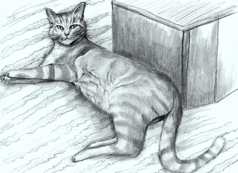 Нарисованный вручную striped кот стоковое фото rf
