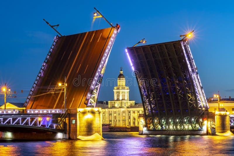 Нарисованный музей белой ночью, Санкт-Петербург моста и Kunstkamera дворца, Россия стоковая фотография