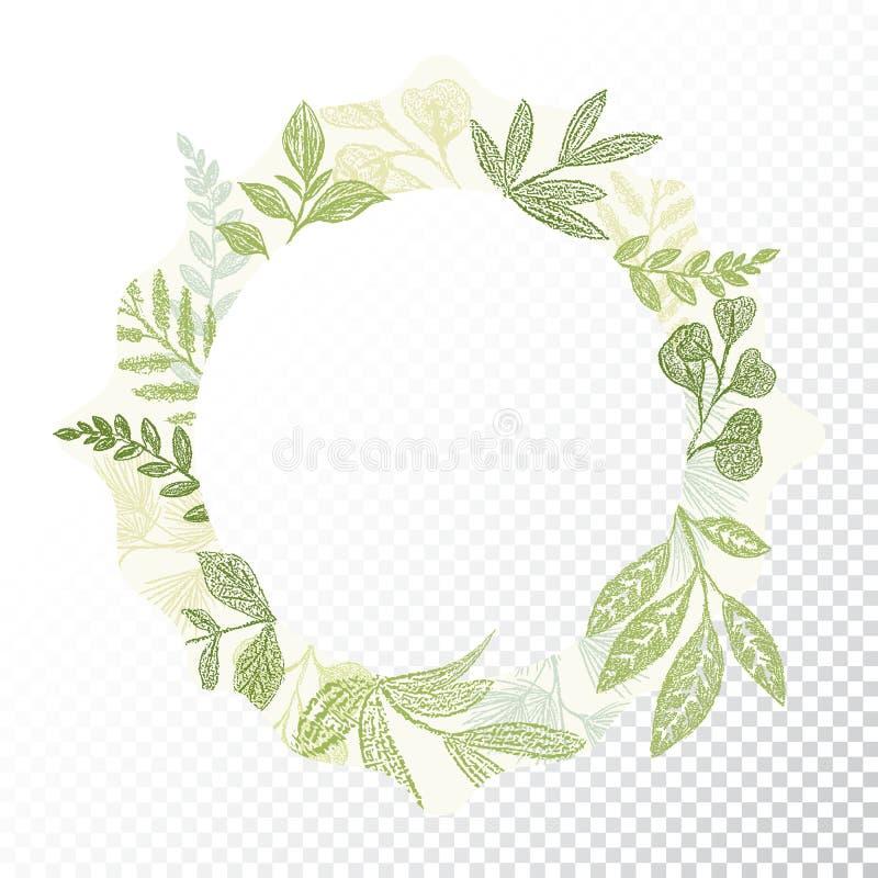 Нарисованный рукой вектор рамки круга flaral бесплатная иллюстрация