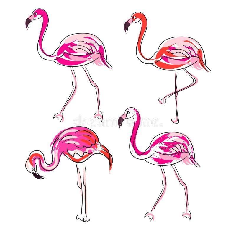 Нарисованный рукой комплект вектора фламинго пинка эскиза иллюстрация штока