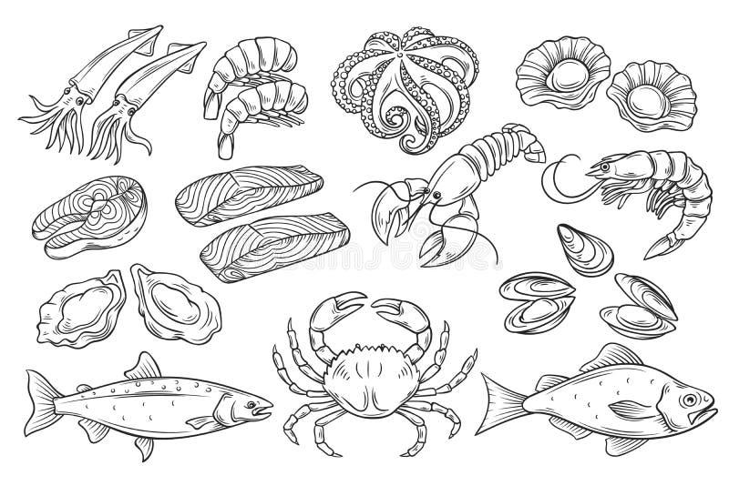 Нарисованный рукой комплект морепродуктов бесплатная иллюстрация