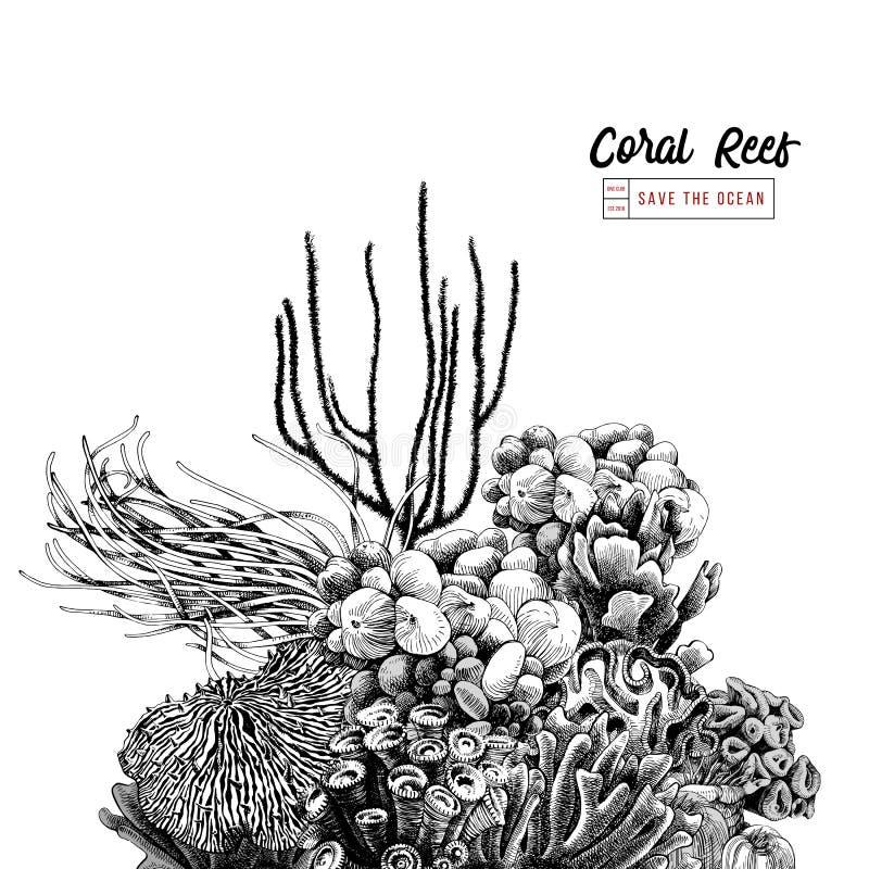 Нарисованный рукой коралловый риф бесплатная иллюстрация