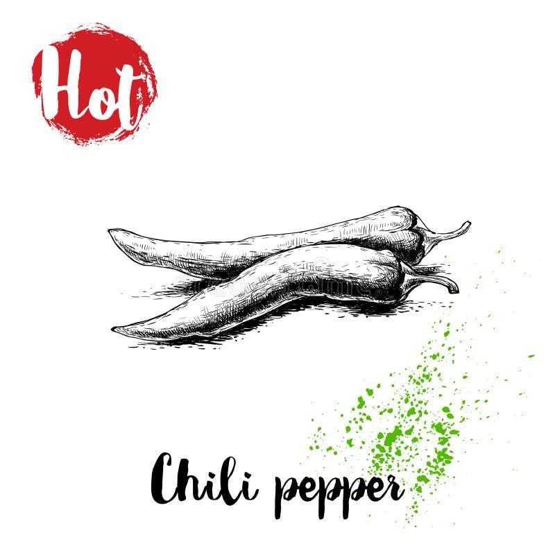 Нарисованный рукой плакат перцев горячего chili стиля эскиза также вектор иллюстрации притяжки corel бесплатная иллюстрация
