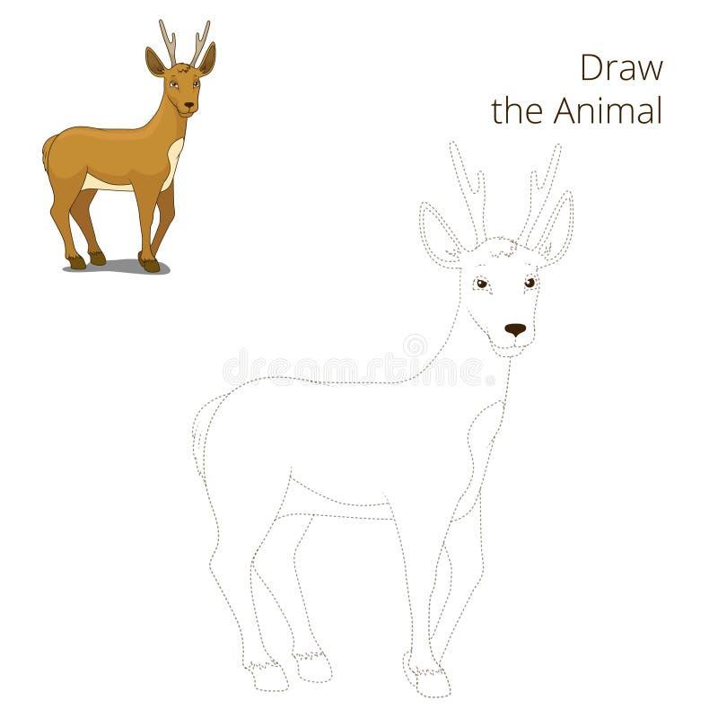 Нарисуйте шарж оленей косуль леса животный иллюстрация штока