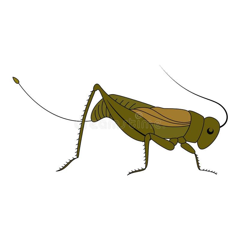 насекомое Милый кузнечик шаржа иллюстрация штока