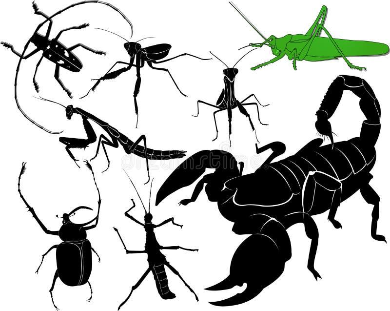 насекомые иллюстрация штока