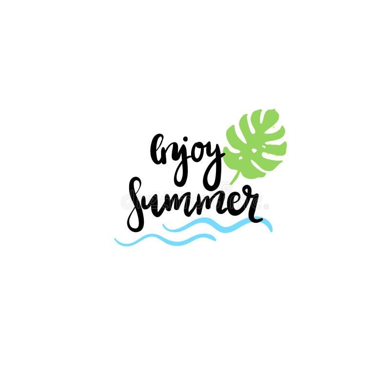 Насладитесь ярлыком дизайна лета изолированным значком типографским Приправьте праздники помечая буквами для логотипа, шаблоны, п бесплатная иллюстрация