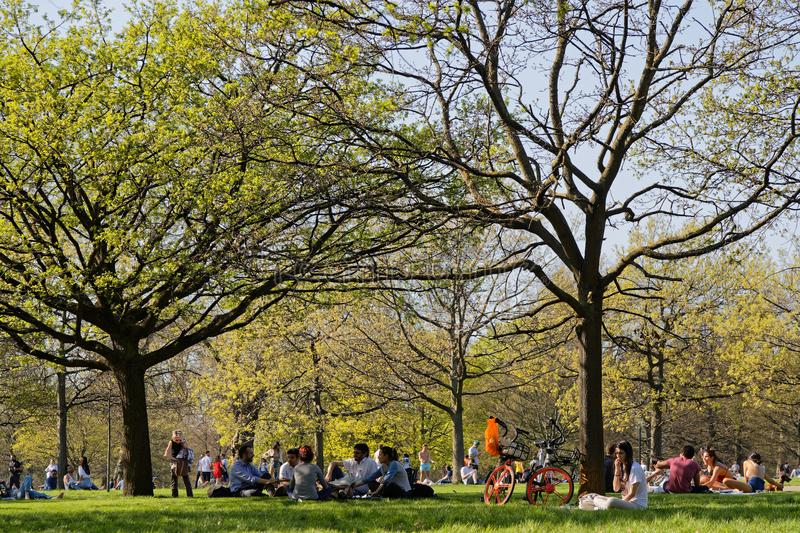 Наслаждаться весной в Гайд-парке стоковые фотографии rf