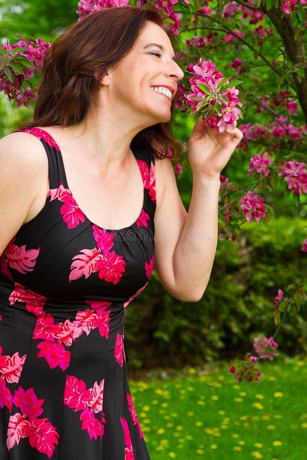 Наслаждаться вишневыми цветами стоковое изображение