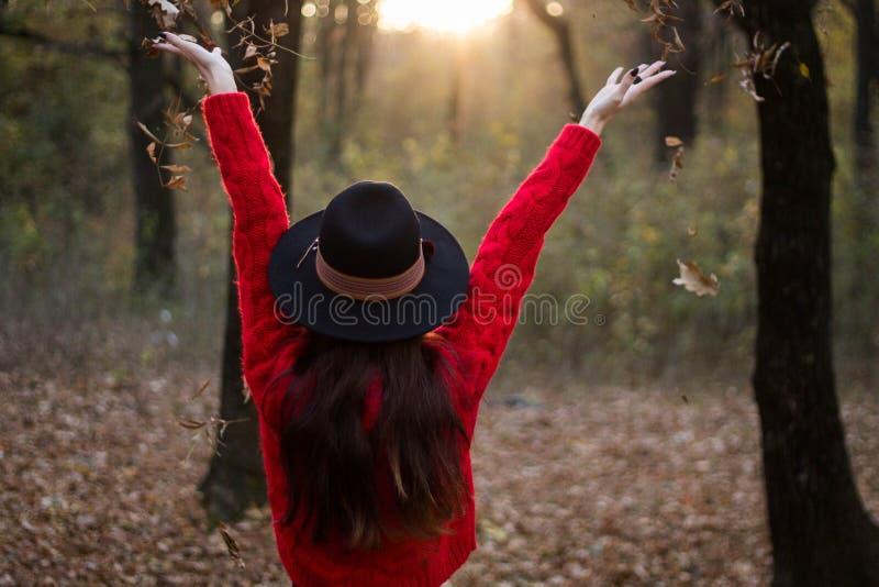 Наслаждаться днем осени в лесе стоковые изображения