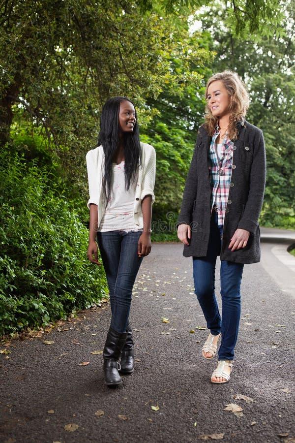 наслаждаться женщинами прогулки парка стоковое фото