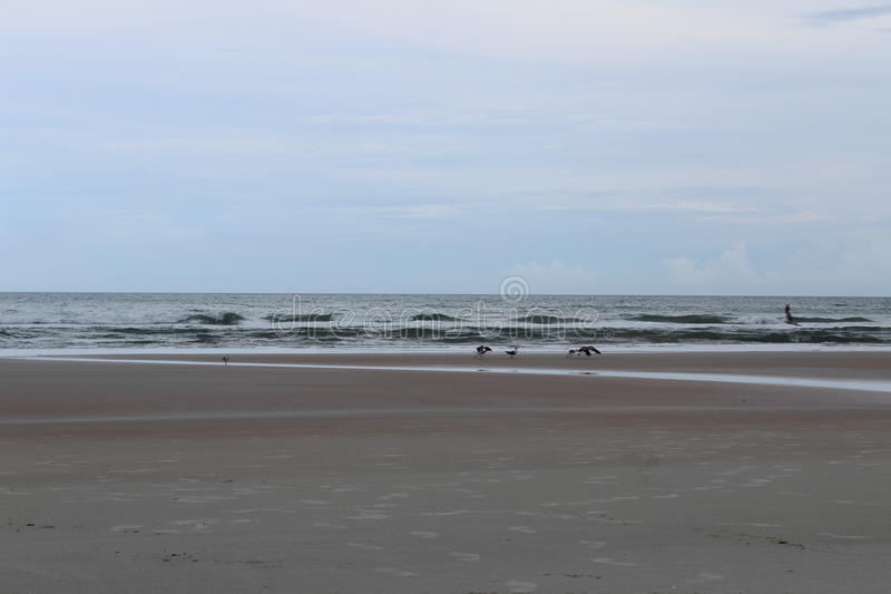 Наслаждаться пляжем стоковые фотографии rf