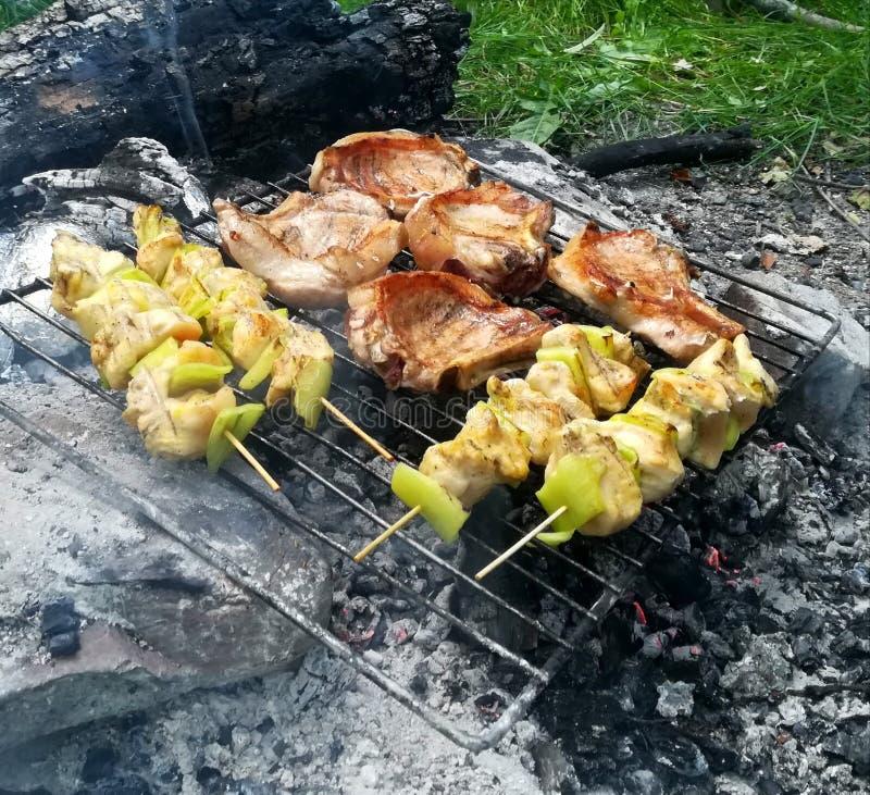 Наслаждаться промежутком времени barbecuing рядом с рекой стоковые изображения rf