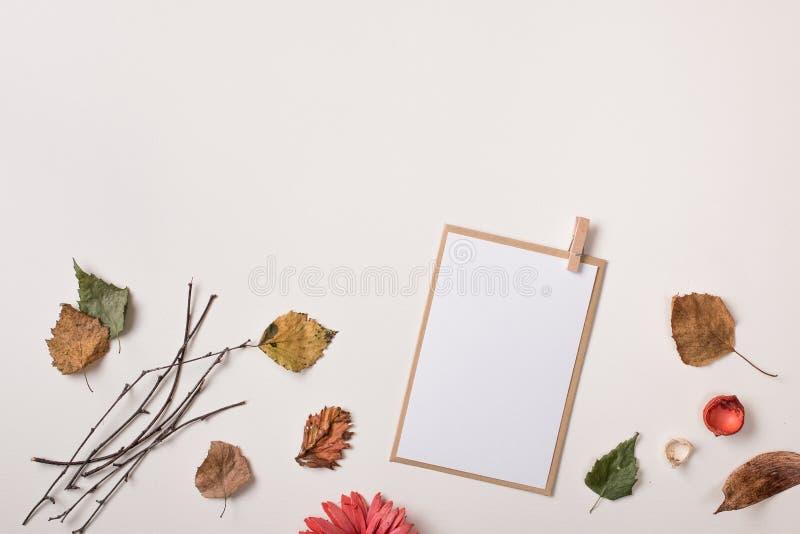 Насмешка бумажной карточки поднимающая вверх и листья осени осени сухие стоковое фото